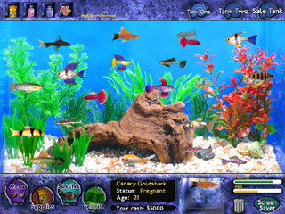 Fish tycoon official site by last day of work for Fish tycoon 2 guide